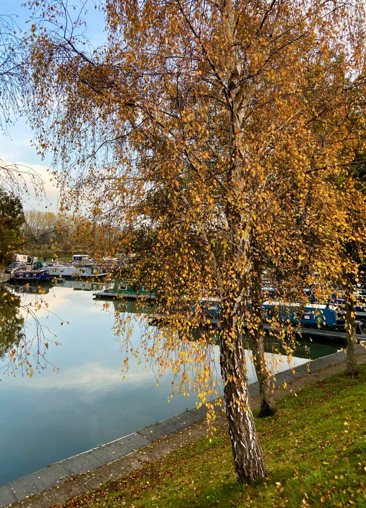 murpworks - The Tales of Silverdale - Autumn on the Marina