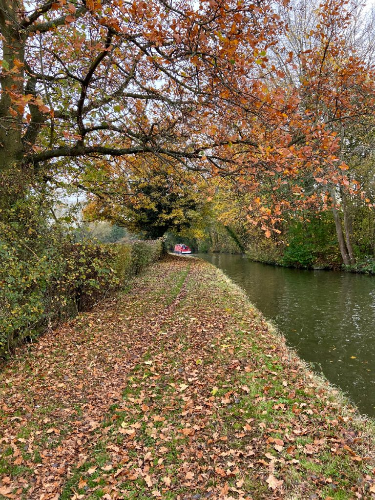 murpworks - The Tales of Silverdale - Autumn into Winter on the Canal image
