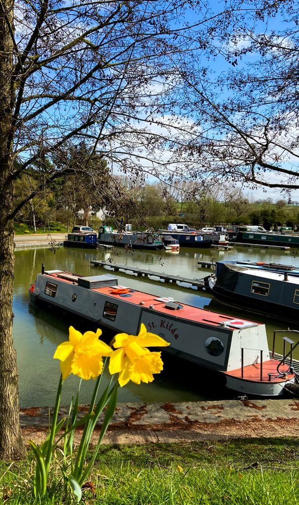 murpworks - The Tales of Silverdale - Spring 2021 - across the Marina in Spring image