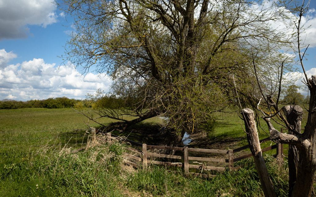 murpworks - The Tales of Silverdale - a penultimate destination - Earith I image