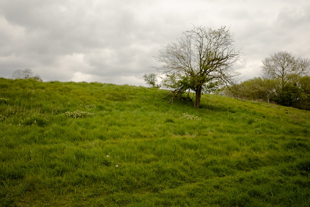 murpworks - The Tales of Silverdale - A Mooring Along the Way - Tree on a Slope image